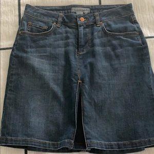 Zara Jean / Denim Skirt